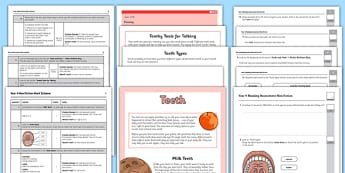 Year 4 Reading Assessment: Non-Fiction Term 1 - year 4, reading, assessment, non-fiction, english, ks2