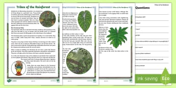 Tribes of the Rainforest Differentiated Reading Comprehension Activity - Tribes of the Rainforest, rainforest, tribal people, comprehension activities, second level comprehe