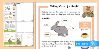 KS1 How to Look After a Rabbit Differentiated Comprehension Go Respond  Activity Sheets - Pets, pet, EYFS, KS1, take, care, look, after, family, member, members, vet, vet surgery, surgery, i