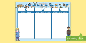 Animals Including Humans Topic KWL Grid - animals, humans, kwl