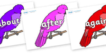 KS1 Keywords on Parakeets - KS1, CLL, Communication language and literacy, Display, Key words, high frequency words, foundation stage literacy, DfES Letters and Sounds, Letters and Sounds, spelling