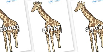 KS1 Keywords on Giraffe - KS1, CLL, Communication language and literacy, Display, Key words, high frequency words, foundation stage literacy, DfES Letters and Sounds, Letters and Sounds, spelling