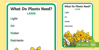 Needs of Plants Lawn Mnemonic Display Poster - Australian Curriculum Biological sciences, plant needs, plant requirements, lawn, mnemonic, ACSSU002