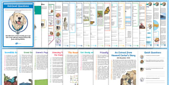 Year 4 Reading Skills Bumper Resource Pack - Reading Dogs, Content Domains, Inference, Reading SATs, Y1, Deduction, Speed Reading, Comprehension