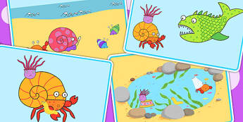 Short Story Sequencing to Support Teaching on Sharing a Shell - storybooks, stories
