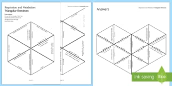 Respiration and Metabolism Tarsia Triangular Dominoes - Tarsia, gcse, biology, respiration, aerobic, anaerobic, metabolism, reaction, glucose, energy, mitoc, plenary activity