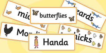 Handa's Hen Word Cards - Handa's Hen, Eileen Browne, Africa, African culture, African animals, counting, Mondi, sunbirds, bullfrogs, spoonbills, story, story book, story book resources, story sequencing, story resources, Word cards, Word Card, flashc