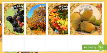 Autumn Display Photo Cut-Outs English/French  -  seasons, weather, cutout, display, autumn vocabulary