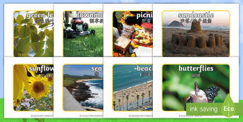 Summer Display Photos English/Mandarin Chinese - Summer Display Photos - Summer, seasons, photo, display photo, beach, sun, flowers, ice cream, sea,