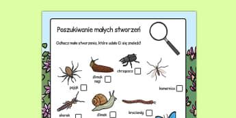 Arkusz Małe stworzonka po polsku