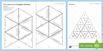 Plant Reproduction Triangular Dominoes - Tarsia, Dominoes, Plant Reproduction, Pollen, Pollination, Stamen, Stigma, Anther, plenary activity
