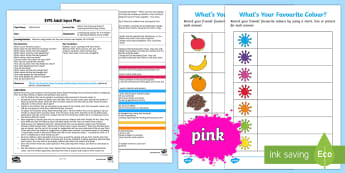 EYFS What's Your Favourite Colour? Counting and Recording Activity Adult Input Plan and Resource Pack - Mathematics, number, counting, count, EYFS