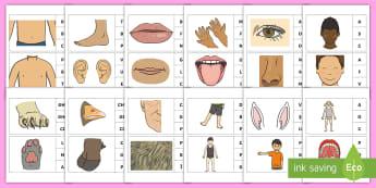 Marcheză litera corespunzătoare primului sunet: Părțile corpului Activitate - sunet și litera, sunete și litere, litere, litere de tipar, activități, jocuri, fonetică,Romani