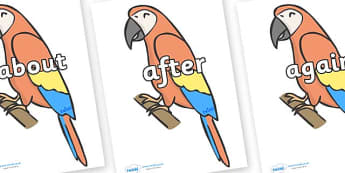 KS1 Keywords on Parrots - KS1, CLL, Communication language and literacy, Display, Key words, high frequency words, foundation stage literacy, DfES Letters and Sounds, Letters and Sounds, spelling