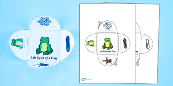 Frog Life Cycle Interactive Visual Aid - frog, life cycle, visual