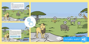 Safari Animals Picture Hotspots - EYFS, Early Years, KS1, Safari, Africa, animals, elephant, lion, hippo, giraffe, snake, animal sound, Twinkl Go, twinkl go, TwinklGo, twinklgo