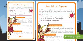 Kiwi Kid Superhero Display Poster - new zealand, superheroes, Year 1-3, reading, comprehension