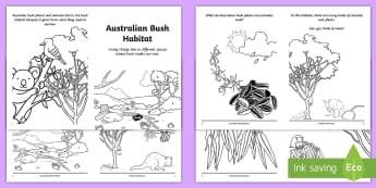 Australian Bush Habitat Booklet - science story, ACSSU211, Year 1 science, animal needs, plant needs, forest,Australia