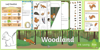 Childminder Forest and Woodland EYFS Resource Pack - woods, outdoor, forest school, woodland animals, child minder, childminding