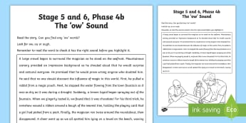 Northern Ireland Linguistic Phonics Stage 5 and 6, Phase 4b, 'ow' Sound Text Activity Sheet  - NI, Worksheet, sound search, text, phonics