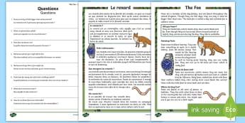 Fox Reading Comprehension French/English - fox,foxes, foxes comprehension, comprehend, fox facts, fox information, question, EAL French,
