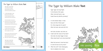 'The Tyger' by William Blake Literary Text - Skellig, David Almond, Michael, Mina, KS3 Literature, KS3 Novel, Low Ability Reading, Year 7 Novel,