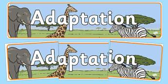 Adaptation Display Banner - adaptation banner, adaption display, adaption display header, adaption display word, ks2 science topics, adapting, environments