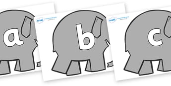 Phoneme Set on Grey Elephant to Support Teaching on Elmer - Phoneme set, phonemes, phoneme, Letters and Sounds, DfES, display, Phase 1, Phase 2, Phase 3, Phase 5, Foundation, Literacy
