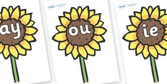 Phase 5 Phonemes on Sunflowers - Phonemes, phoneme, Phase 5, Phase five, Foundation, Literacy, Letters and Sounds, DfES, display