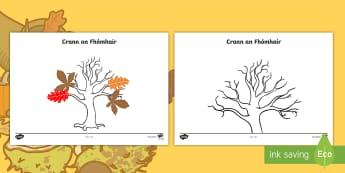 Autumn Tree Activity Sheet - fómhar, crann, art, duilleoga, leaves, irish, worksheet