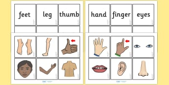 Parts Of The  Body Word and Picture Matching Cards - parts of the body word and picture matching cards, parts of the body, body parts, word and picture, words, picture, image, matching cards, matching, cards, flashcards, card, body