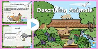 Describing Animals PowerPoint - Structure, feature, body, part, interactive, pet.