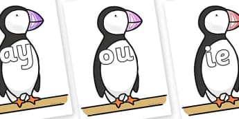 Phase 5 Phonemes on Puffin to Support Teaching on The Great Pet Sale - Phonemes, phoneme, Phase 5, Phase five, Foundation, Literacy, Letters and Sounds, DfES, display