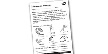 Seed Dispersal Worksheet - seed dispersal, how seeds are dispersed, seed dispersal worksheet, different types of seed, plant germination, green plants, ks2