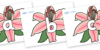 Phoneme Set on Lilies - Phoneme set, phonemes, phoneme, Letters and Sounds, DfES, display, Phase 1, Phase 2, Phase 3, Phase 5, Foundation, Literacy