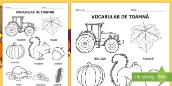 Toamna Fișă de colorat Cuvinte ilustrate - arte plastice, culorile toamnei, vocabular de toamna, comunicare, activități,Romanian