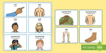 Parts of the Body Communication Cards English/Portuguese  - Parts Of The Body Communication Cards - parts of the body, communication, cards, flashcards, communi