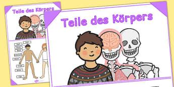 Teile des Körpers German - german, body, poster, display