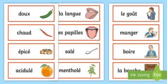 Cartes de vocabulaire : Le goût - Semaine Du Goût, Octobre, Science, Sens, Écrire, Cycle 2, Cycle 3