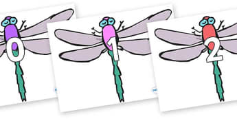 Numbers 0-100 on Dragonflies - 0-100, foundation stage numeracy, Number recognition, Number flashcards, counting, number frieze, Display numbers, number posters