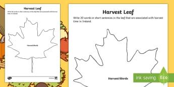 Harvest Leaf Activity Sheet - ROI Harvest, leaf, autumn, vocabulary, leaves,Irish, worksheet, leaves, autumn, ireland, seasons