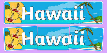 Hawaii Display Banner