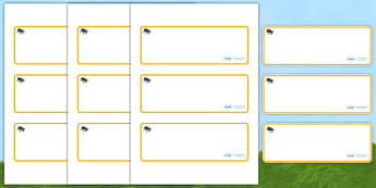Beetle Themed Editable Drawer-Peg-Name Labels (Blank) - Themed Classroom Label Templates, Resource Labels, Name Labels, Editable Labels, Drawer Labels, Coat Peg Labels, Peg Label, KS1 Labels, Foundation Labels, Foundation Stage Labels, Teaching Label