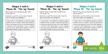 Northern Ireland Linguistic Phonics Stage 5 and 6 Phase 3b, 'oy' Sound Activity Sheet