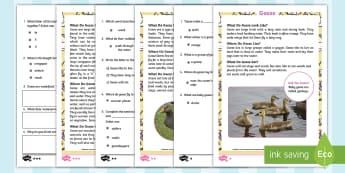 KS1 Geese Differentiated Comprehension Go Respond Activity Sheets - Children's Books, story, book, Easter, save, saving, Easter Bunny, bunny, bunnies, stories, chick,
