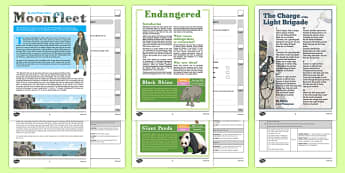 Year 6 Reading Assessment Term 2 - year 6, reading, assessment, term 2