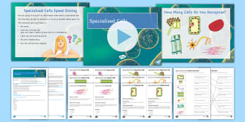 AQA Unit 4.1 Specialised Cells Cover Lesson Pack - Specialised cells, sperm cell, egg cell, palisade cell, root hair cell, nerve cell