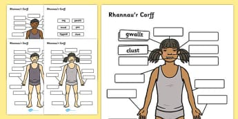 Rhannau'r Corff Labelling Activity Cymraeg - cymraeg, body parts, labelling, activity, body, parts