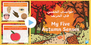 My Five Autumn Senses PowerPoint Arabic/English  - autumn, five senses, seasons, weather, leaves, EAL