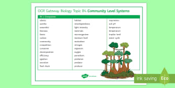 OCR Gateway Biology Topic B4 Community Level Systems Word Mat - Word Mat, gcse, keywords, Ecosystems, ecology, revision